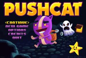 Pushcat - logo
