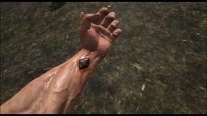 ARK - Survival Evolved - cristal