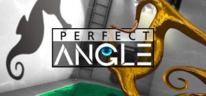 Perfect Angle - logo
