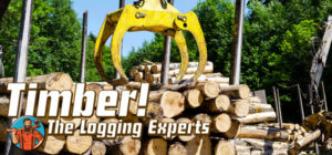 timber-the-logging-experts-logo